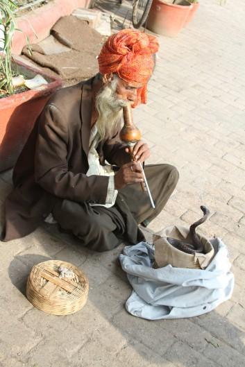 Snake Charmer - for a fee