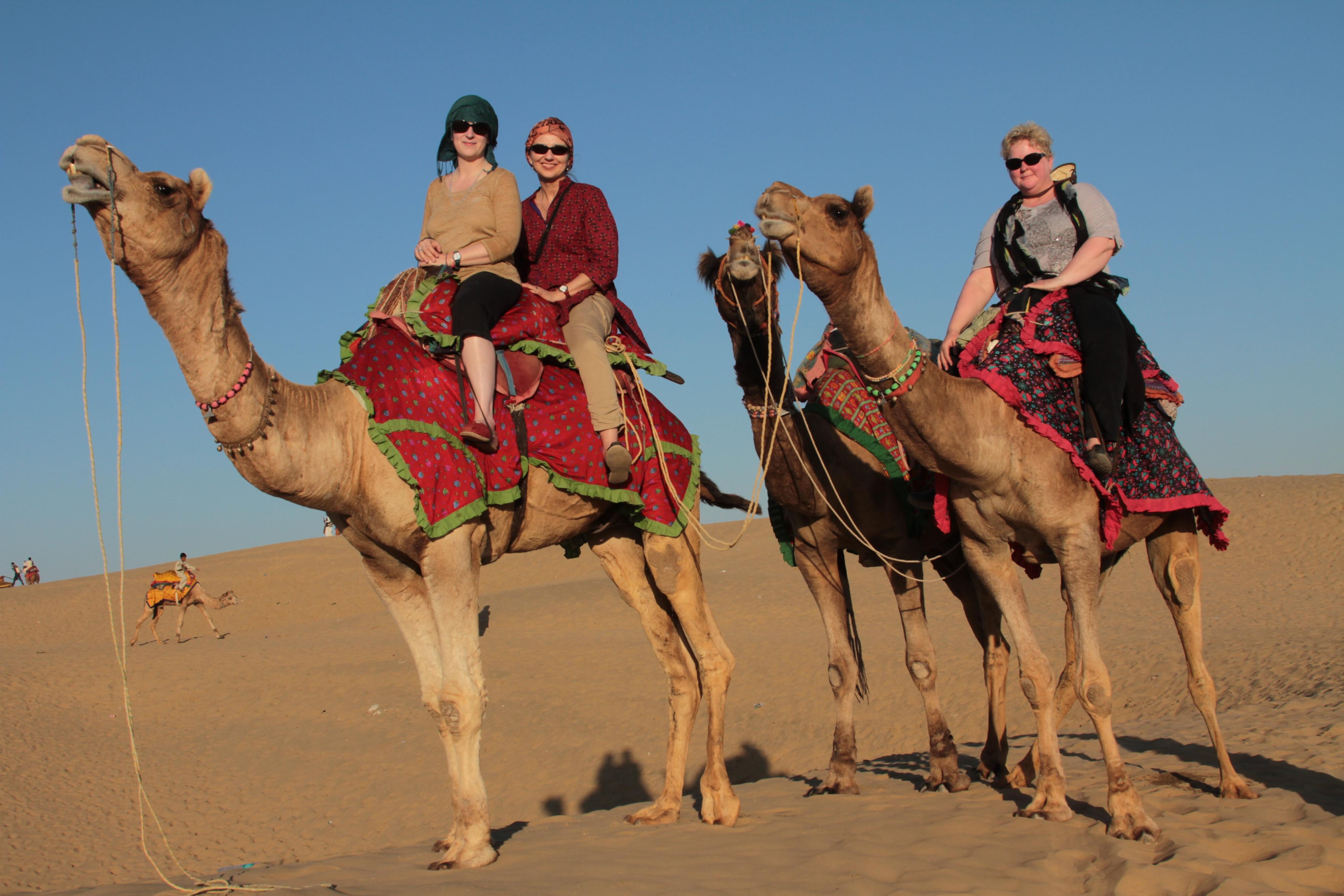 Camel ride in the Thar Desert