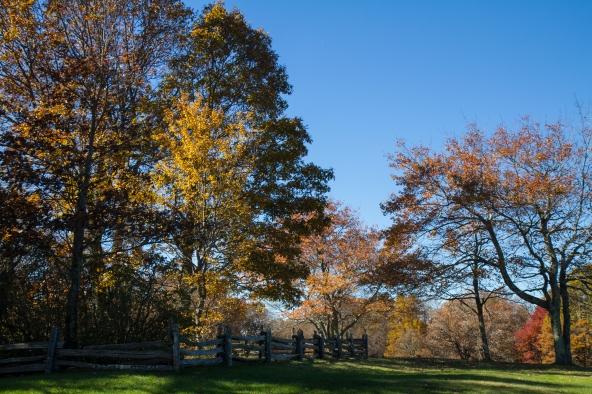 Along the Blue Ridge Parkway, Virginia