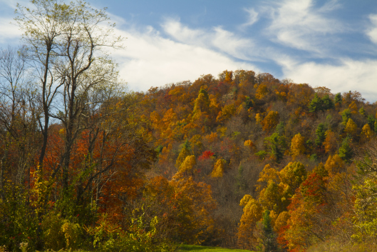Autumn Along the Blue Ridge Parkway, Virginia.