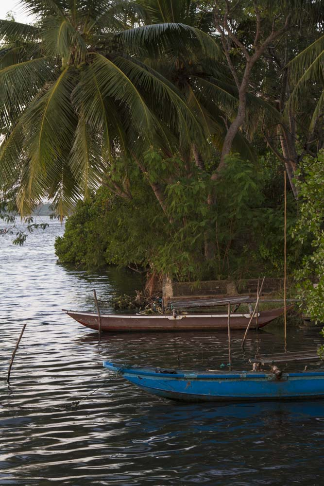 Fishing boats in lagoon near Negombo, Sri Lanka