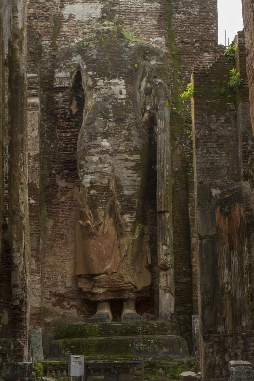 Ruins of standing Buddha on the back wall of a temple at Polonnaruwa, Sri Lanka