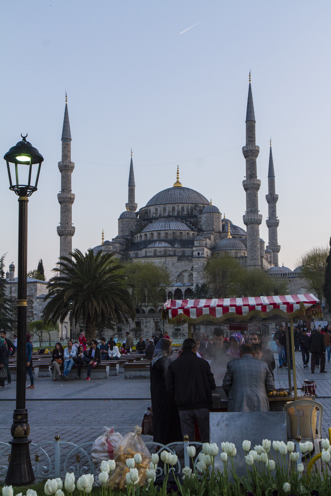 Twilight at the Blue Mosque
