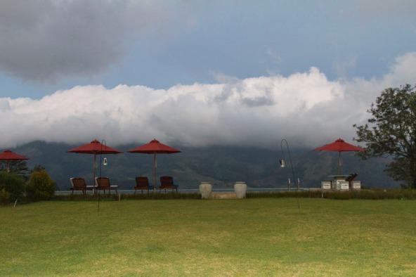 Almost eye level, Sri Lankan Highlands,  Madukele Tea & Eco Lodge