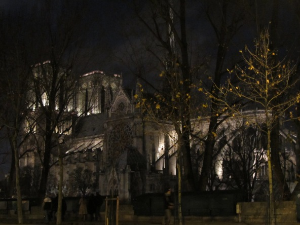 Notre Dame After Dark, Paris, France