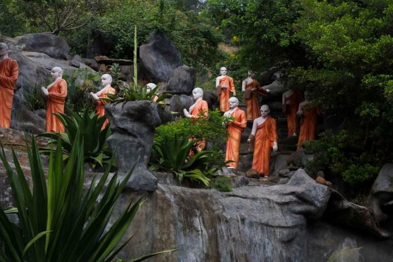 Monks carrying offerings, Near Dambulla Caves, Sri Lanka.