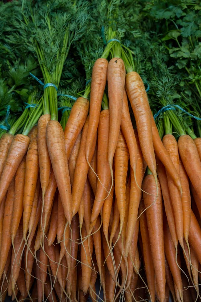 Carrots, Budapest Central Market, Hungary