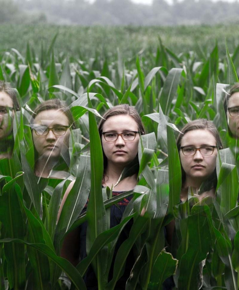 Growing Clones