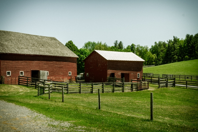 Barns, Kinderhook Farm, Columbia County, NY