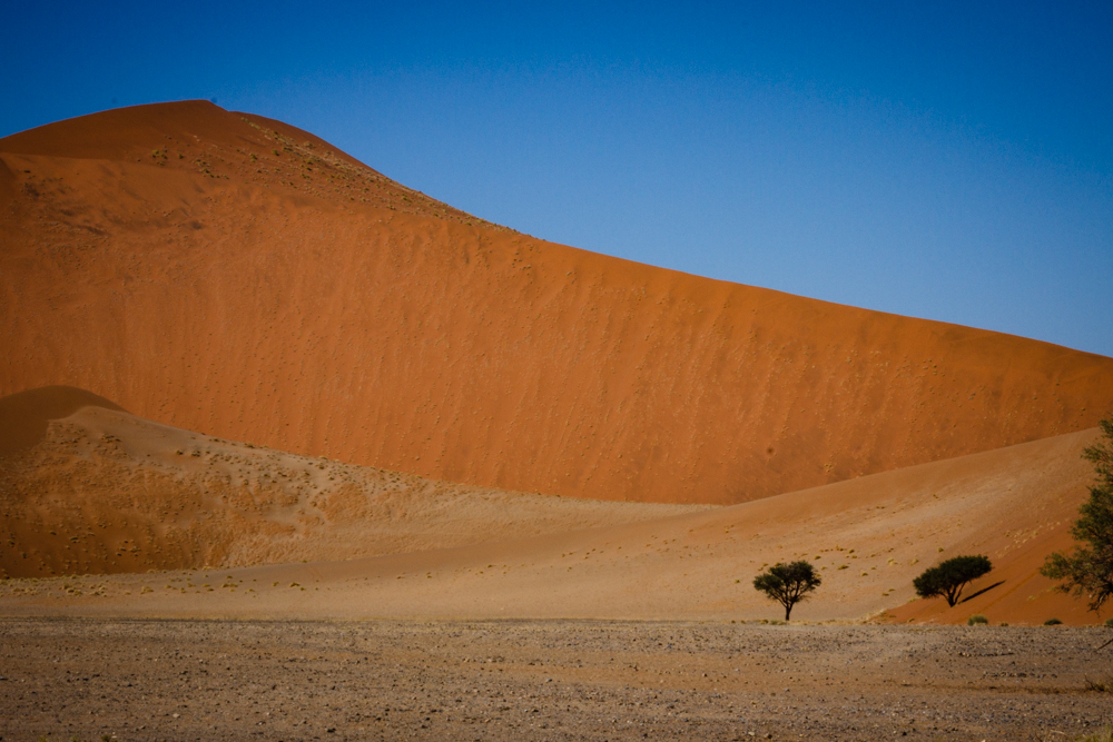 Sand Dunes, Sossusvlei, Namib Desert, Namib-Naukluft National Park Namibia