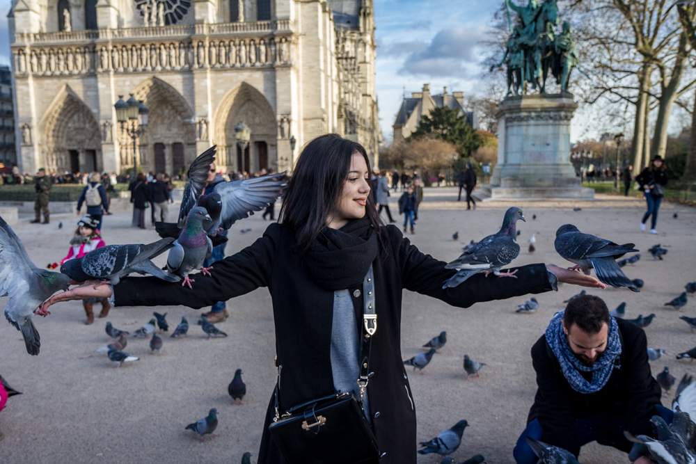 Feed the Birds, plaza in front of Notre Dame, Paris, France