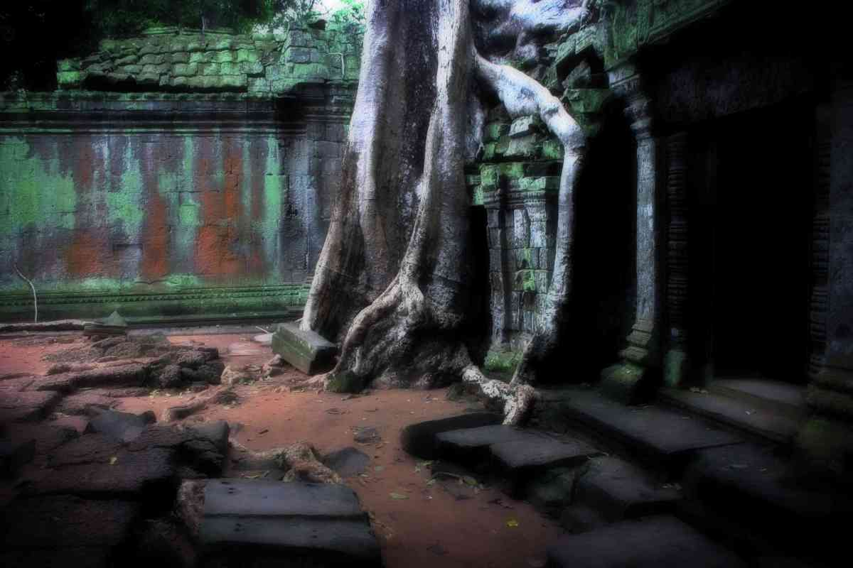 Temple Ruins, Ta Phrom, Ankgor, Siem Reap Region, Cambodia
