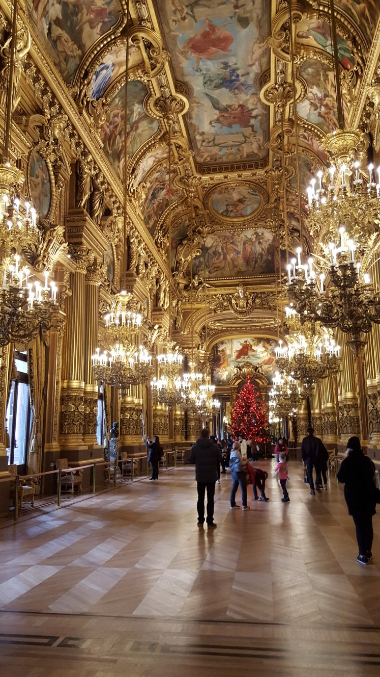 Palais Garnier, Grand Salon, Paris, France