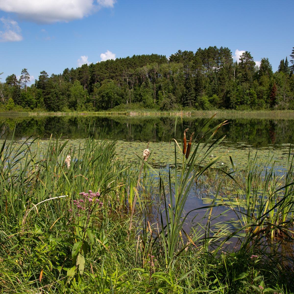 Minnesota Summertime, Big Mantrap Lake